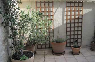 Maison Jaune - Vue de la terrasse en automne