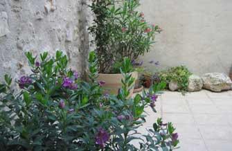 Maison Jaune - Vue de la terrasse fleurie en été